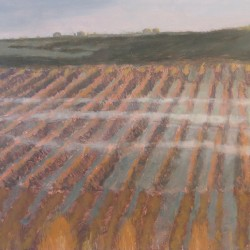 Oil painting on gesso of smoke from workers' morning fires drifting over a pear orchard on author William Dicey's farm in Ceres, Western Cape, South Africa.